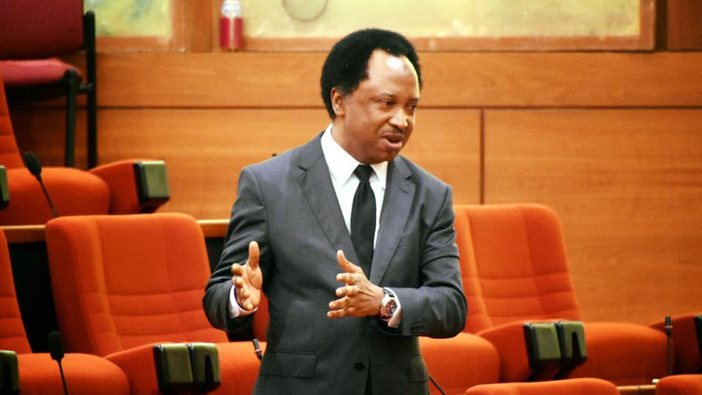 I Didn't Lose, I Was Robbed - Shehu Sani