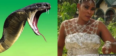 Woman dies from snake bite hours after marrying her pastor boyfriend