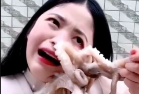 OMG: Octopus Sucks Onto Woman's Face As She Tries To Eat It Alive [Photos]